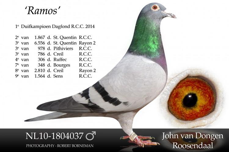 NL10-1804037