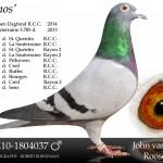 NL10-1804037 kopie